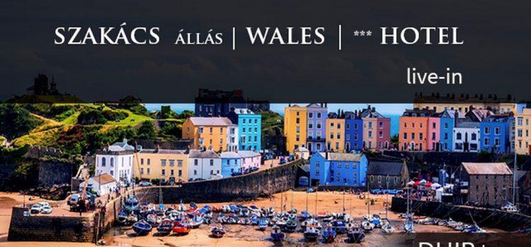 Szakács állás, Commis Chef pozíció szállással – Egyesült Királyság, Wales